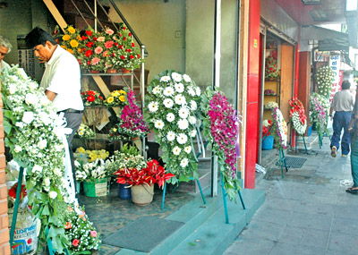 Wholesale flowers at Dean's road